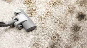 10 Easy Carpet CleaningTips